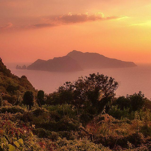 Italy is magical ? ?✨ . . ? Italy, Termini of Massa Lubrense (view of Capri) . . . #massalubrense #puntacampanella #sorrento #italy #holiday #vacation #vacationdestination #vacationdiaries #italianstyle #lavitaèbella #dolcevita #capri #takemybreathaway #destinations #travel #worldtravel #bestdestinations #seetheworld #wander #wonder #roadtrip #coast #sunset #coastline #sunsetvision #destinationearth #unlimitedsunset #bellaitalia #sheclicks #enjoythecoast
